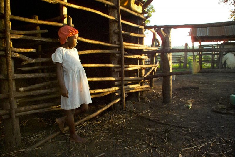 Birungi's daughter, Kajumba, at the cattle shed