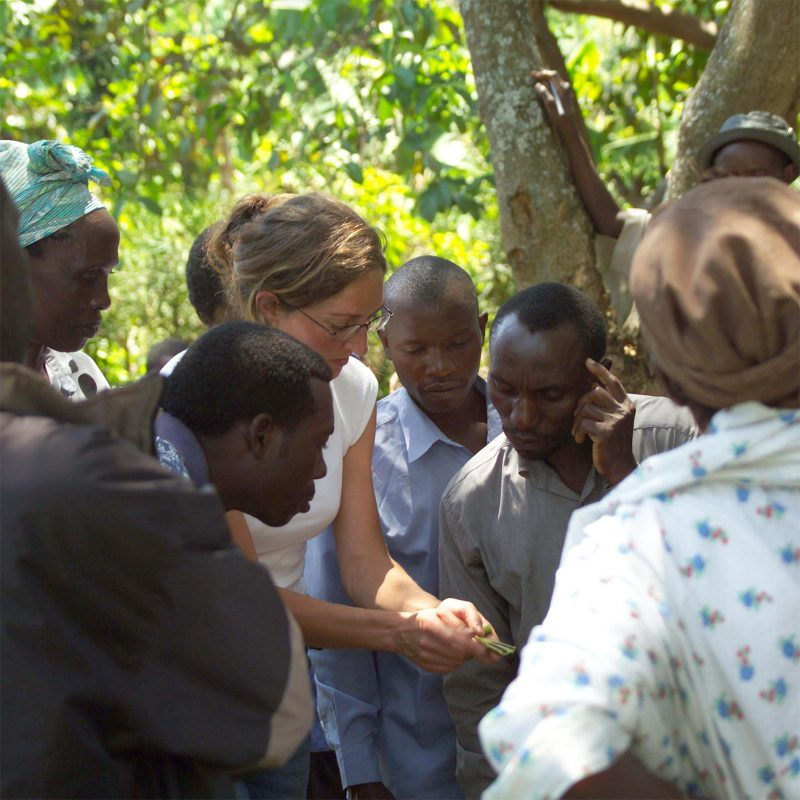 Lulu discussing vanilla bean ripeness with Sasu from Rwenzori Farmers