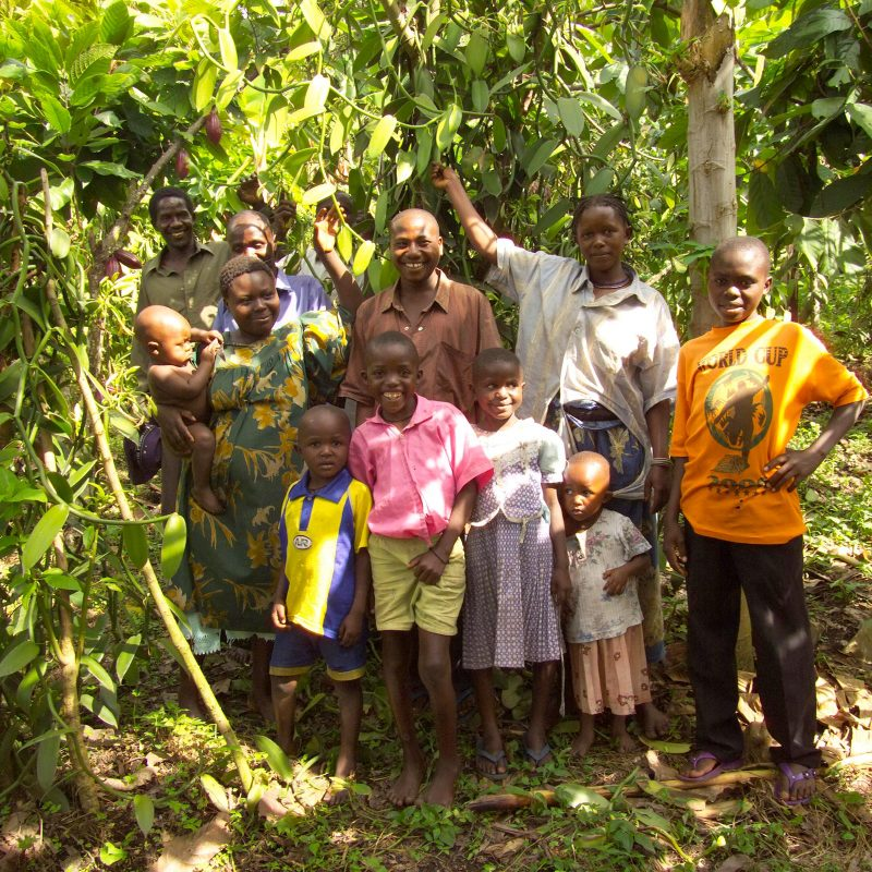 Rwenzori Fairtrade vanilla farmers family in front of vanilla vines