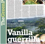 Vanilla Guerilla - The Independent